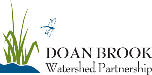 Doan Brook Watershed Partnership